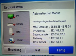 Screenshot: Netzwerkstatus