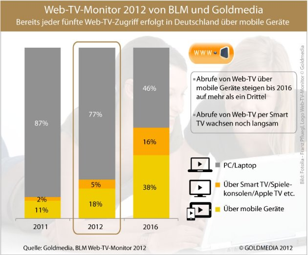 Web-TV-Monitor 2012 - Endgeräte